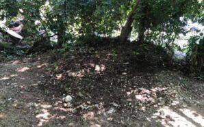 В Івано-Фракнівську мешканці будинку самостійно прибрали територію котельні від сміття.…