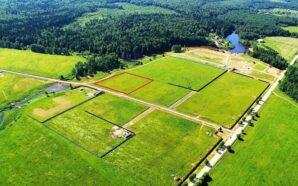 У Калуші проведуть інвентаризацію земель у дачних масивах