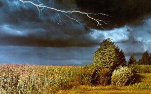 Грози, град та шквальний вітер: прикарпатців попереджають про зміну погоди