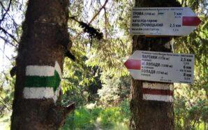 У Карпатах відновлюють гірські маркування для туристів. ФОТО