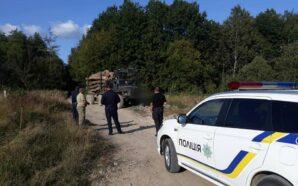 Поліцейські викрили незаконну порубку лісу на Прикарпатті. ФОТО