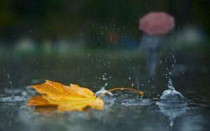 В Україну йдуть дощі та прохолода