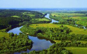 Вода в прикарпатських річках одна з найчистіших в Україні. ВІДЕО