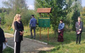 Прикарпатські журналісти вшанували пам'ять своїх загиблих колег