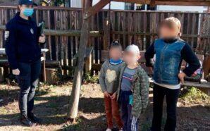 Працівники прикарпатської ювенальної превенції нагадують батькам про відповідальність, яку вони…