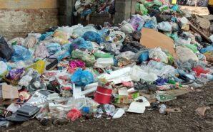 У Франківську мешканці середмістя викидають сміття просто на вулицю. ФОТО