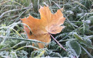 Сьогодні вночі в Україні температура знизиться до 0°
