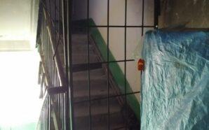У Франківську мешканці розводять антисанітарію