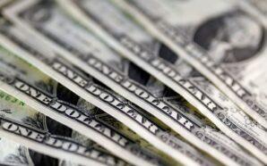 Курс гривні до долара тримається на одних рівнях весь тиждень