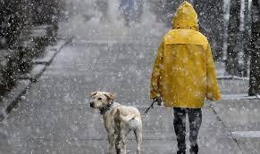 На Прикарпатті очікують похолодання та мокрий сніг