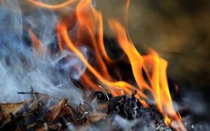 На Прикарпатті дві сусідки побилися через дим від спаленого бур'яну