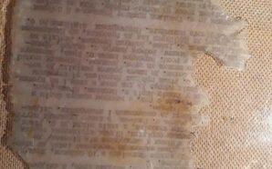 На Прикарпатті знайшли документи у закопаному бідоні. ФОТО