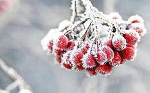 В Україну повертаються морози
