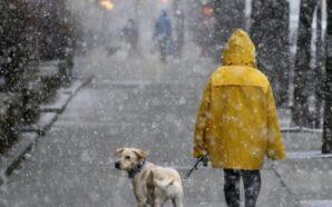 З понеділка на Прикарпатті очікують хуртовину та сніг