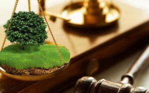 На Прикарпатті прокуратура вимагає повернення в державну власність земельної ділянки…
