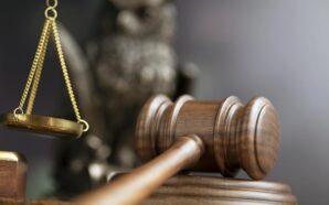 На Рогатинщині судили жінку за вирощення снотворного маку