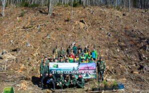 Прикарпатці висадили 700 дерев в урочищі Погорілий