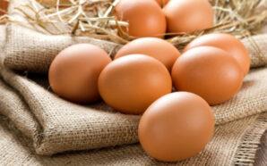 За рік яйця подорожчали на 109% – Держстат